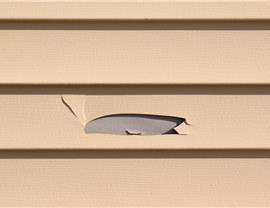 Siding - Repair Photo 4