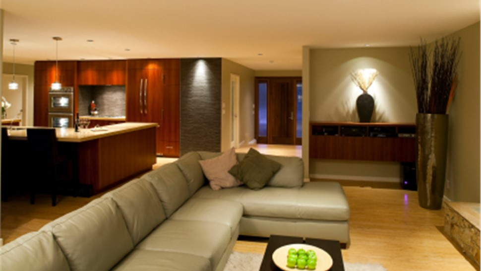 Basements - Basement Design Photo 1