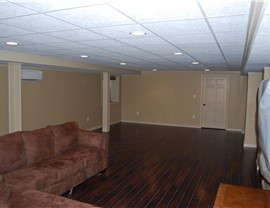 Basements - Basement Ceiling Photo 2