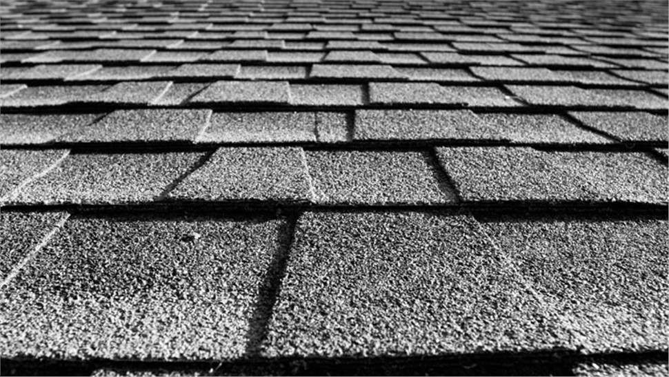 Roofing Types - Shingles Photo 1