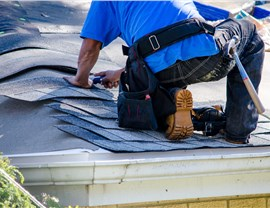Roofing Types - Shingles Photo 2