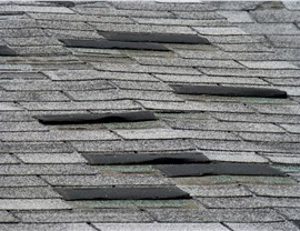 Insurance Claims - Wind Damage Photo 3