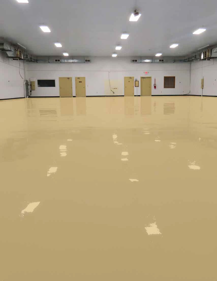 Finishes   Solid Color Epoxy Photo 1