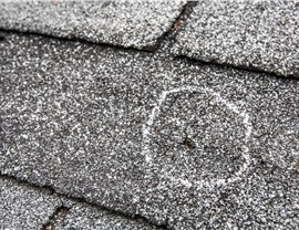 Roofing - Hail (storm) Photo 3