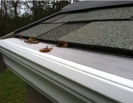 Siding Gutter Protection Photo 2