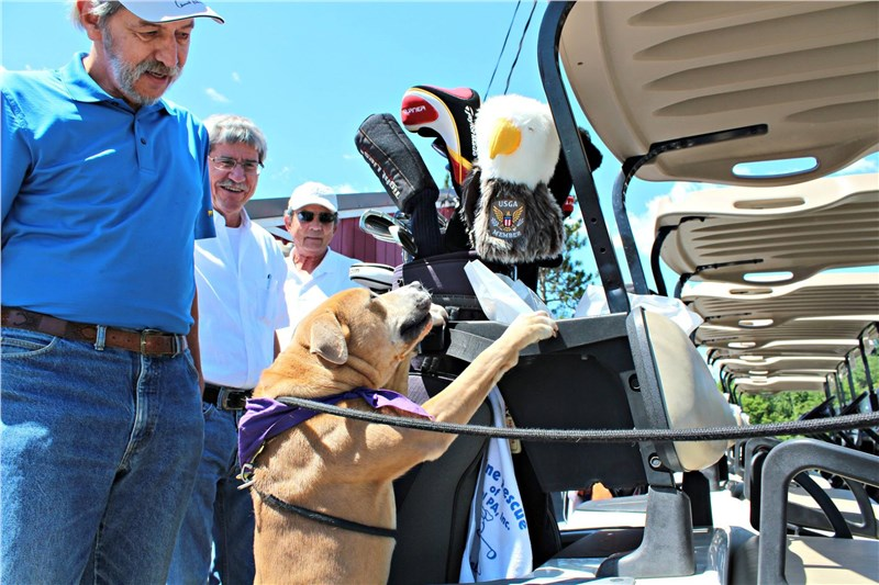 West Shore Sponsors & Golfs At Canine Rescue of Central PA's 2017 Golf Classic