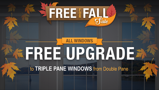 Free for Fall Sale - Windows